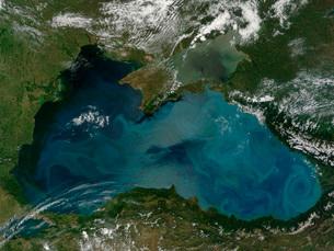 Phytoplankton bloom in the Black Sea.の写真素材 [FYI02107686]