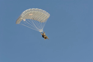 A pararecueman parachutes during a training mission.の写真素材 [FYI02108000]