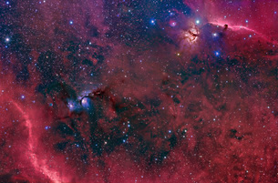 Widefield view in the Orion constellation.の写真素材 [FYI02108185]