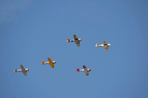 A group of restored vintage warbirds fly in formation.の写真素材 [FYI02108237]