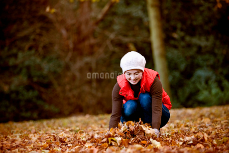 A woman gathering autumn leavesの写真素材 [FYI02109995]
