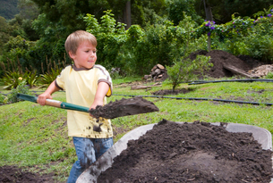 Boy (4-6) using spade to fill wheelbarrow with soil in gardenの写真素材 [FYI02110255]