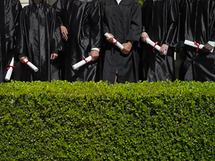 Row of university students in graduation gowns holding diplomas, mid-section, hedge in foregroundの写真素材 [FYI02110524]
