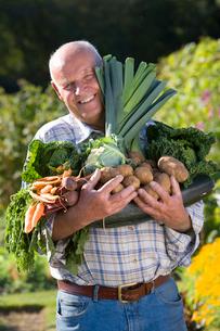 Man holding vegetables in gardenの写真素材 [FYI02113081]