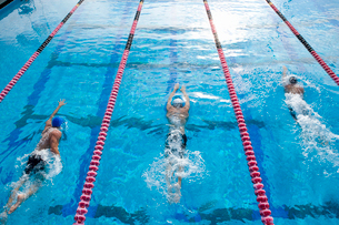 Male swimmers training in swimming pool, elevated viewの写真素材 [FYI02113161]