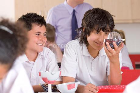 School boys working with biology model in classroomの写真素材 [FYI02113480]