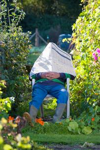 Man napping under newspaper in gardenの写真素材 [FYI02114950]