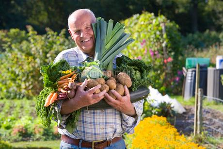 Man holding vegetables in gardenの写真素材 [FYI02114979]