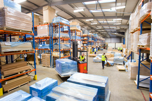 Warehouse workers moving pallets with forkliftの写真素材 [FYI02115267]