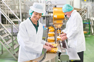 Worker stacking cheese on production line in cheese processing plantの写真素材 [FYI02115377]