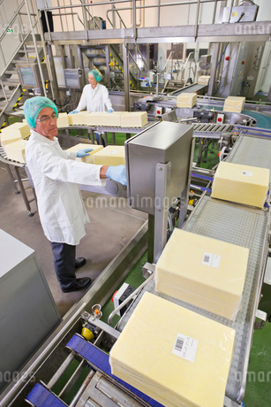 Worker at production line control panel in cheese processing plantの写真素材 [FYI02115399]