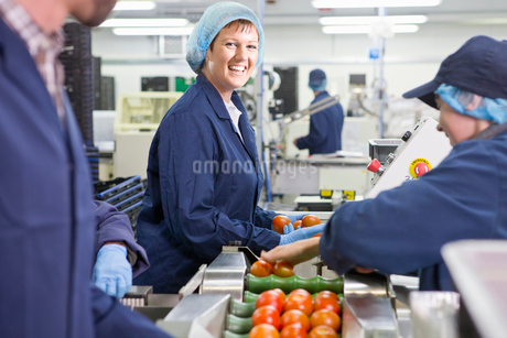 Portrait smiling quality control worker inspecting tomatoes on production line in food processing plの写真素材 [FYI02115498]