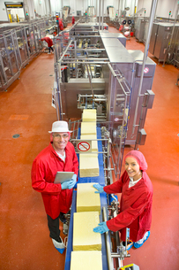 High angle view portrait smiling quality control workers at production line in cheese processing plaの写真素材 [FYI02115549]