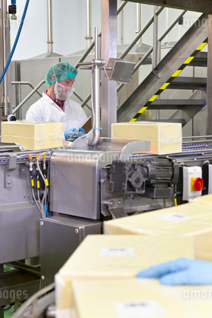 Worker behind machinery at production line in cheese processing plantの写真素材 [FYI02115673]