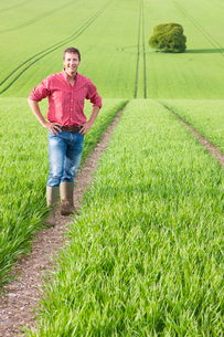 Portrait of smiling farmer with hands on hips in fieldの写真素材 [FYI02115725]