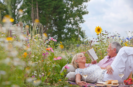 Smiling senior couple drinking wine and having picnic in field of wildflowersの写真素材 [FYI02116260]