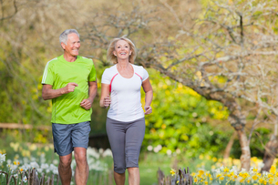 Smiling senior couple jogging in daffodil fieldの写真素材 [FYI02117151]