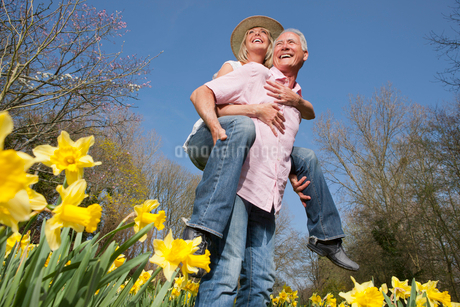 Happy senior couple piggybacking in sunny daffodil fieldの写真素材 [FYI02117357]