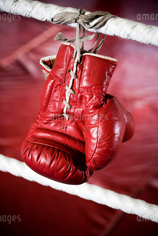 Close up of boxing gloves on the ropes of a boxing ring.の写真素材 [FYI02117537]