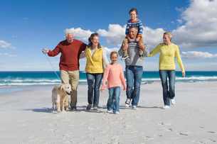Multi-generation family with dog walking on sunny beachの写真素材 [FYI02118555]
