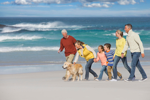 Multi-generation family walking with dog on sunny beachの写真素材 [FYI02118631]