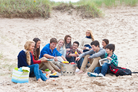 Teenage friends enjoying barbecue on beachの写真素材 [FYI02118937]