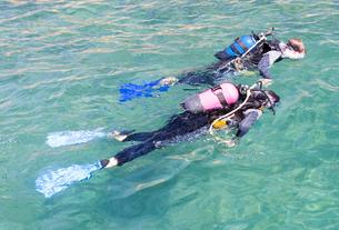 A couple scuba divingの写真素材 [FYI02119049]