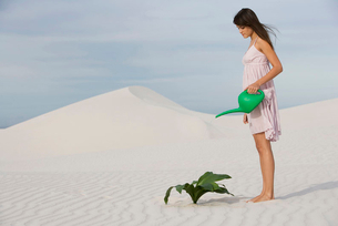 A woman watering a plant in the sandの写真素材 [FYI02119407]