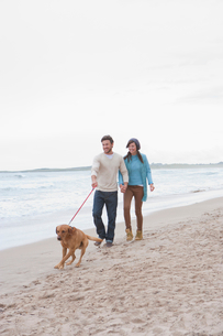 Young couple walking dog on beachの写真素材 [FYI02119498]