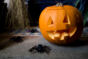 Atmospheric Hallowe'en scene - pumpkin, broomstick and spidersの写真素材 [FYI02119886]