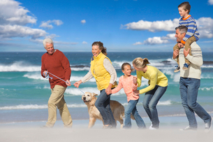 Multi-generation family walking with dog on sunny beachの写真素材 [FYI02120019]