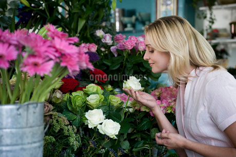 Woman in a florist's shop, smelling a white roseの写真素材 [FYI02120208]