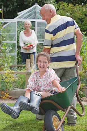 Grandfather Giving Granddaughter Ride In Garden Wheelbarrowの写真素材 [FYI02120239]