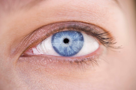 A woman's blue eye with makeupの写真素材 [FYI02120562]