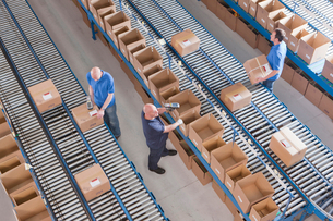 Workers packing boxes on conveyor belts in distribution warehouseの写真素材 [FYI02120676]