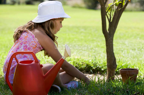 A young girl tending a plant in the gardenの写真素材 [FYI02120758]