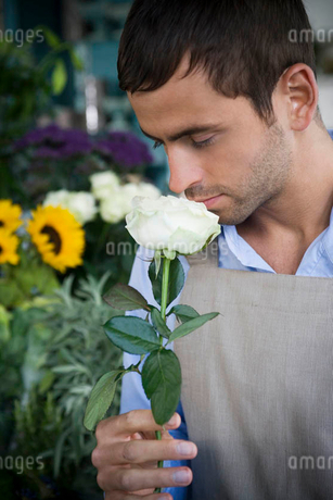 Male florist smelling a white rose in his shopの写真素材 [FYI02120799]