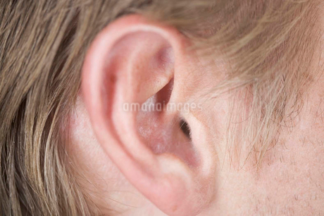Close-up of an earの写真素材 [FYI02120878]