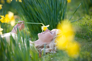 A young woman laying in the grass holding a daffodilの写真素材 [FYI02121430]