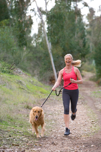 Active senior woman, in pink sports vest and leggings, running with golden retriever along woodlandの写真素材 [FYI02121600]