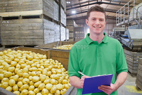 Portrait Of Worker In Potato Processing Warehouseの写真素材 [FYI02122386]