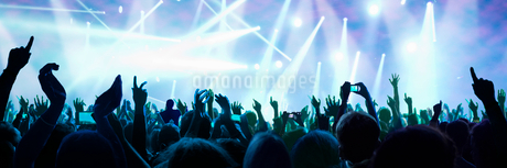 Fans At Concert Enjoy Music And Take Photos On Cellphonesの写真素材 [FYI02122674]