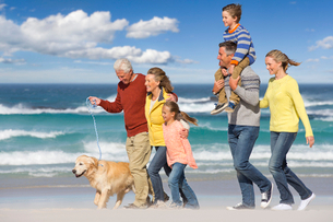 Multi-generation family walking with dog on sunny beachの写真素材 [FYI02122697]