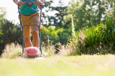 Man pushing lawn mower, mowing grass in sunny summer yardの写真素材 [FYI02123006]