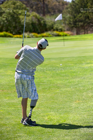 Rear View Of Male Golfer With Artificial Leg Approaching Greenの写真素材 [FYI02123044]