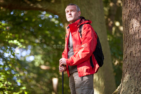 A mature man standing in woodlandの写真素材 [FYI02123146]
