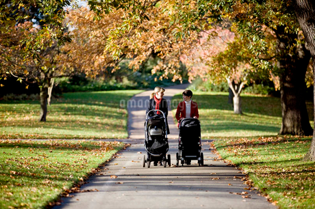 Two mothers pushing their strollers in the park, talkingの写真素材 [FYI02123307]