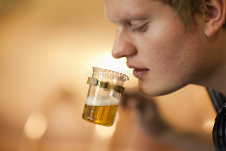 Brewer testing a beer sample at brewery in Traunstein, Bavaria, Germanyの写真素材 [FYI02124717]