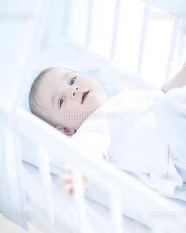 Baby boy in cotの写真素材 [FYI02125528]