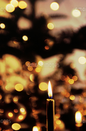 Still life view of a burning Christmas candleの写真素材 [FYI02125575]
